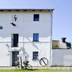 Ausstellung und Café Storchenmühle